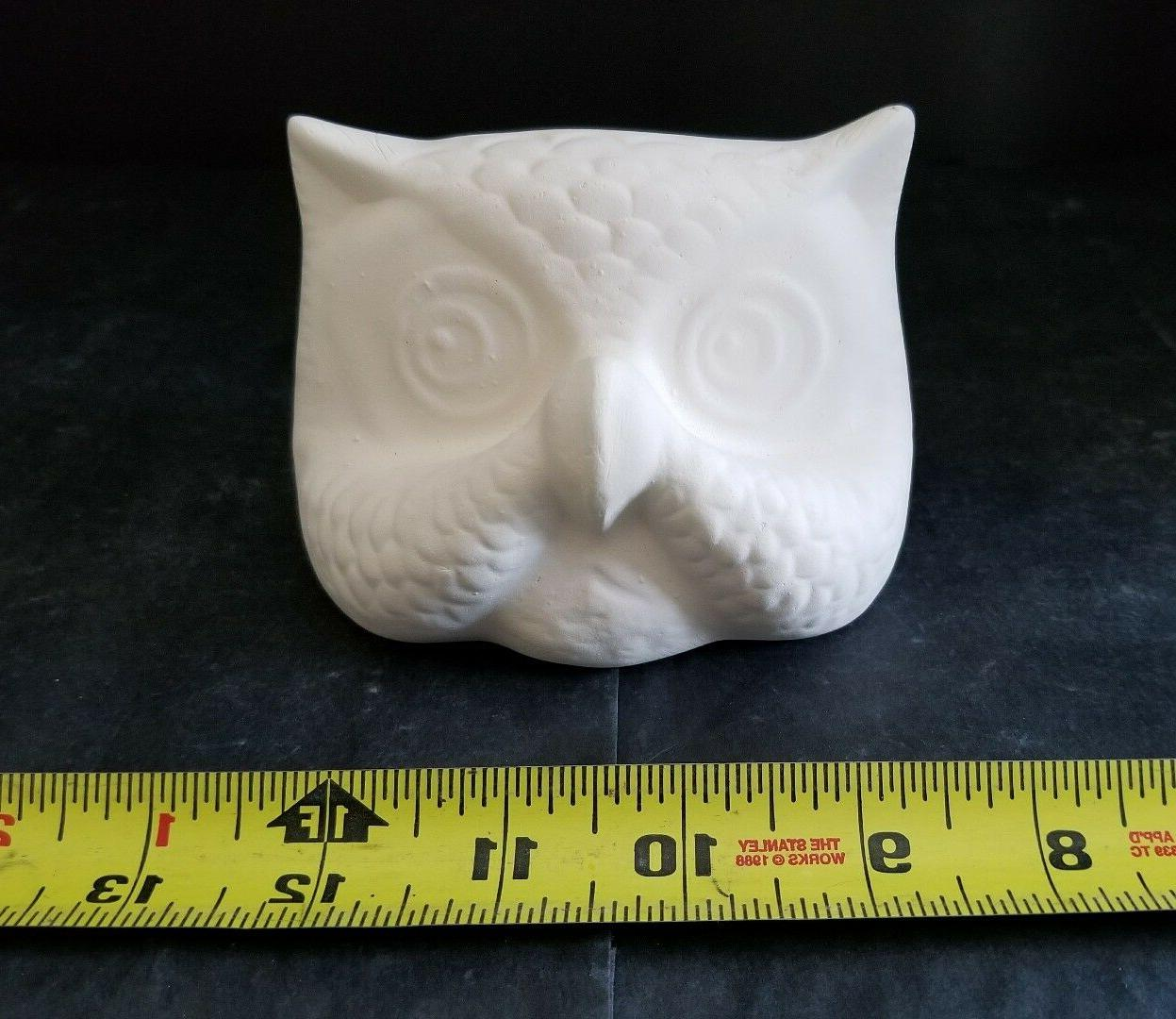 Owl Eye Glasses Holder Ready You Paint